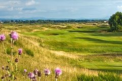 Dundonald Links image