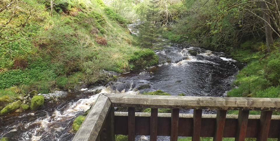 River Stinchar from the Stinchar Falls image
